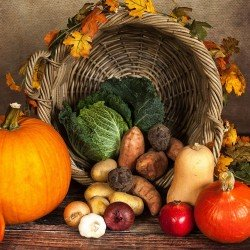 BIO - Panier de légumes de...
