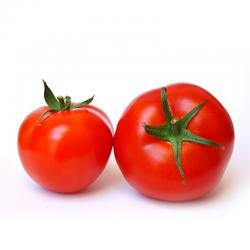 Tomates ronde pleine terre