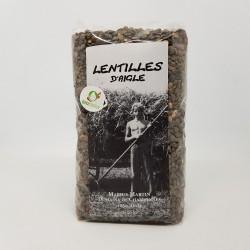 BIO - Lentilles vertes
