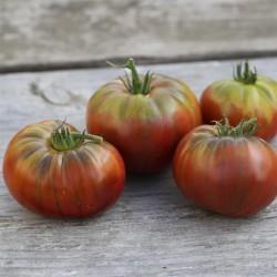 Tomates Noir de Crimée
