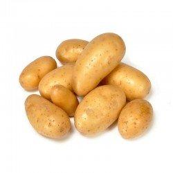 Bintje - Pommes de terre