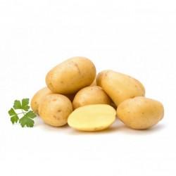 Pommes de terre Venezia