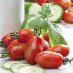 BIO - Tomates San Marzano
