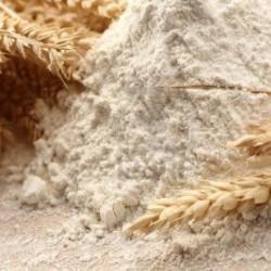 BIO - Farine de blé complet