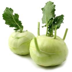 BIO - Chou pomme - Colrave